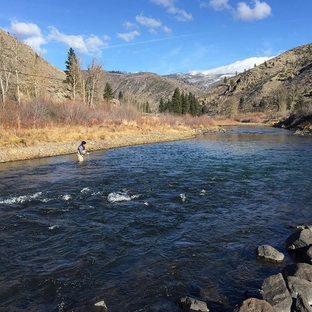 Winter fishing on the Truckee … Big fish and no crowds. Sign me up!#wildtrout #catchandrelease #sageflyfish #redington #alpineflyfishing #tahoetroutsyndicate #guidedflyfishing #maketheconnection #truckeeriver