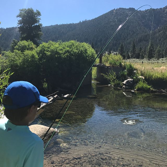 Awesome time with a great group of guys today out at #plesantvalley everyone got their first trout on a #flyrod today! #scottflyrods #tahoetroutsyndicate #guidetrip #rainbowtrout