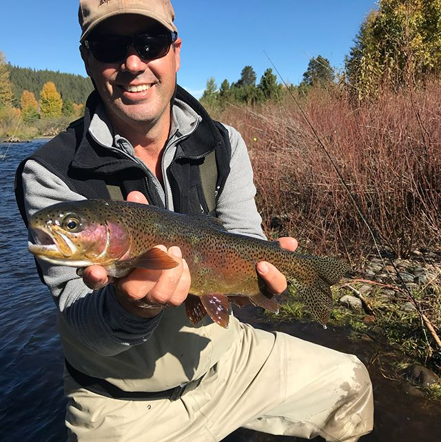 Lots of nice fish landed today and even a couple on #dryflies Get out and fish while the getting is good! #guidedflyfishing #catchandrelease #hitormiss #tahoetroutsyndicate #rainbowtrout #browntrout #scottflyrods