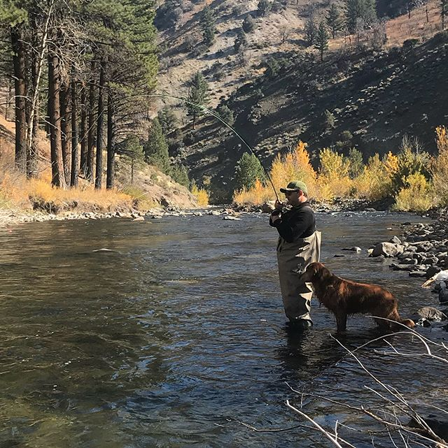 Fun day on the river with a good group of guys! Fall colors are in full effect and fishing is onand as always Griswold has his eyes on the prize #catchandrelease #guidedflyfishing #rainbowtrout #scottflyrods #hitormiss #tahoetroutsyndicate