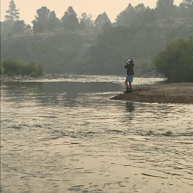 Smoky morning on the river today, but that didn't stop the boys roping on some trout! #guidetrip #tahoetroutbum #eastcarson #alpinecounty #alpineflyfishing #seewhatsoutthere